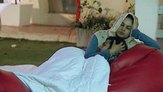 <h3>वीणा मलिक आणि अश्मित पटेल</h3><br/>पाकिस्तानी अभिनेत्री वीणा मलिक आणि अमिषा पटेलचा भाऊ अश्मित पटेल यांचे काही खूपच मादक क्षण कोण विसरू शकणार आहे. घरातील सदस्यांनीही त्यांना किस्स करताना आणि एका ब्लॅन्केटखाली पाहिले होते.