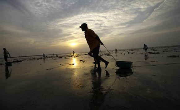 मुंबईत पहाट झाल्यानंतर प्रत्येक जण कामात गुंतत असतो. असाच सकाळच्यावेळी समुद्र किनारी...