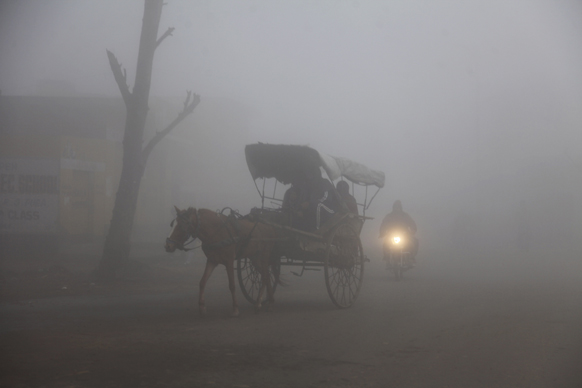 जम्मू-काश्मीर धुक्यात हरवले