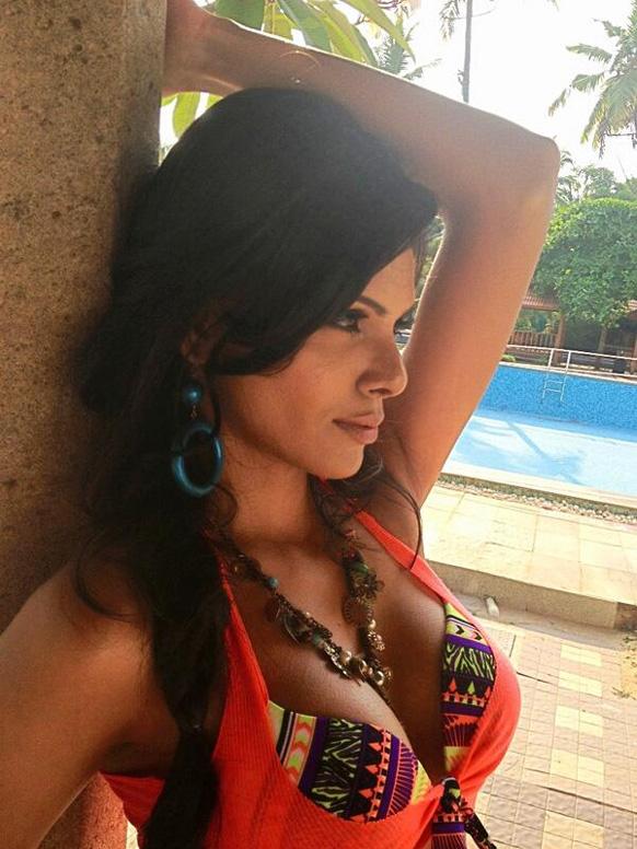 शर्लिन चोप्राने ट्विटरवर नुकताच अपलोड केलेला तिचा हॉट फोटो