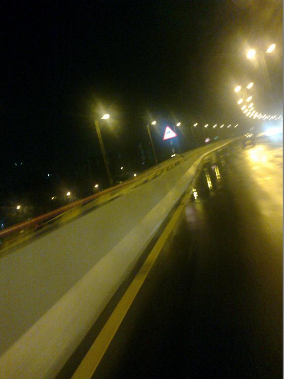 डी पामेलो रोडपासून सुरू होणारा हा रस्ता सध्या चेंबूरपर्यंत जातो.