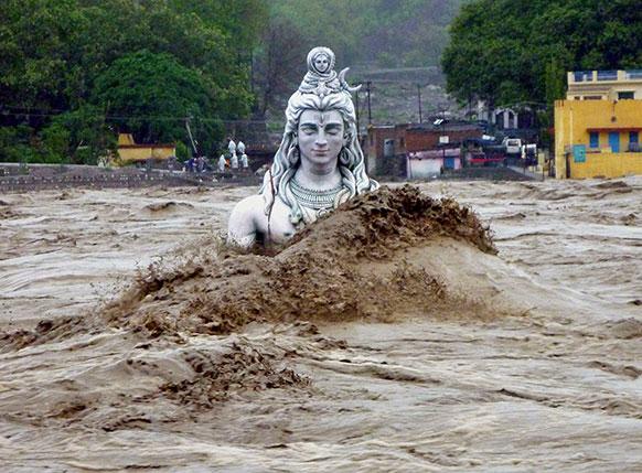 गंगा-युमना नदीला आलेल्या पुरात शिवशंभोही सुटले नाहीत.