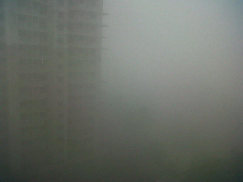 पहाटे फक्त धुकं दिसत होतं