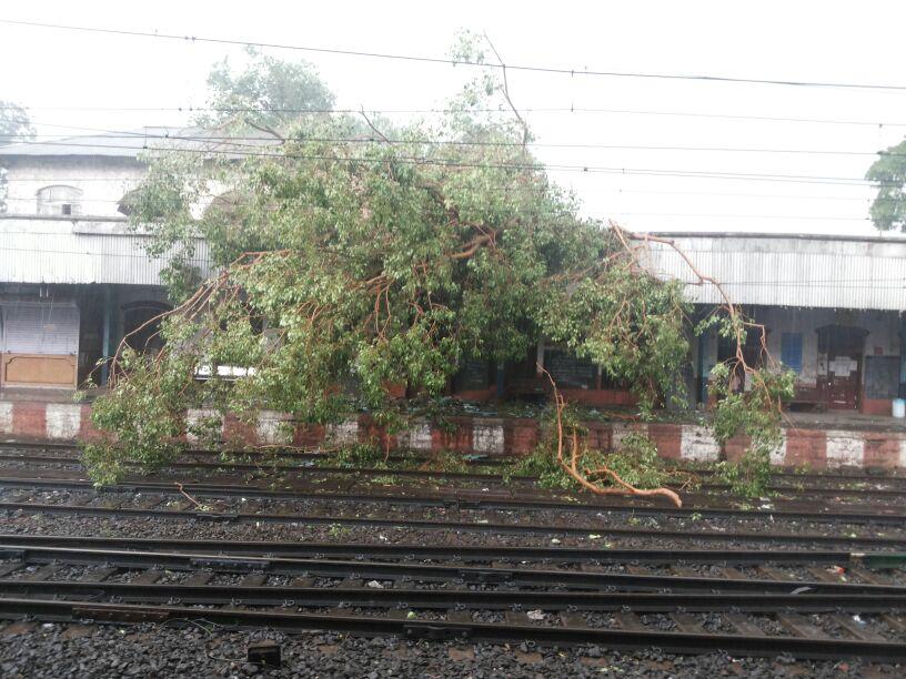 कर्जत रेल्वेस्टेशनवर झाड कोसळल्यानं ओव्हर हेड वायर तुटली