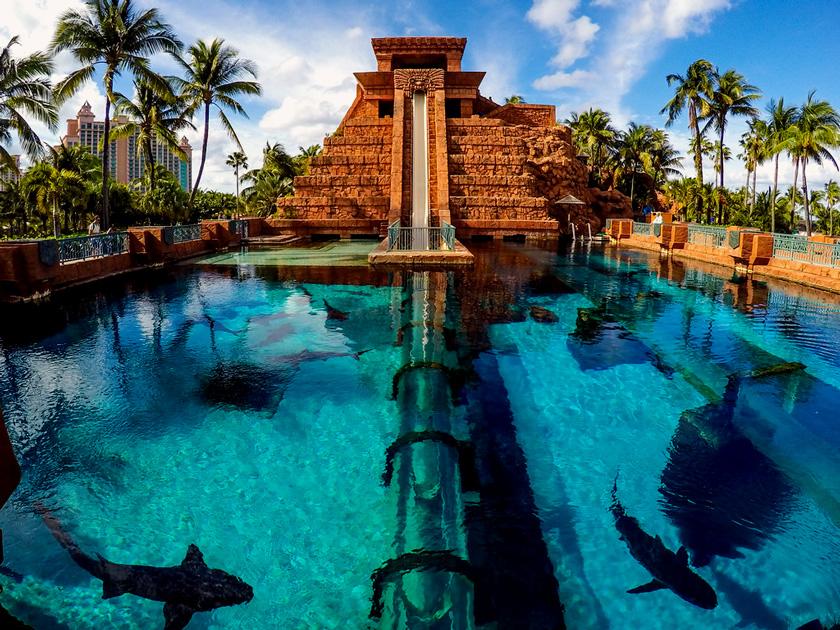 Leap of Faith — Atlantis Paradise Island, Bahamas