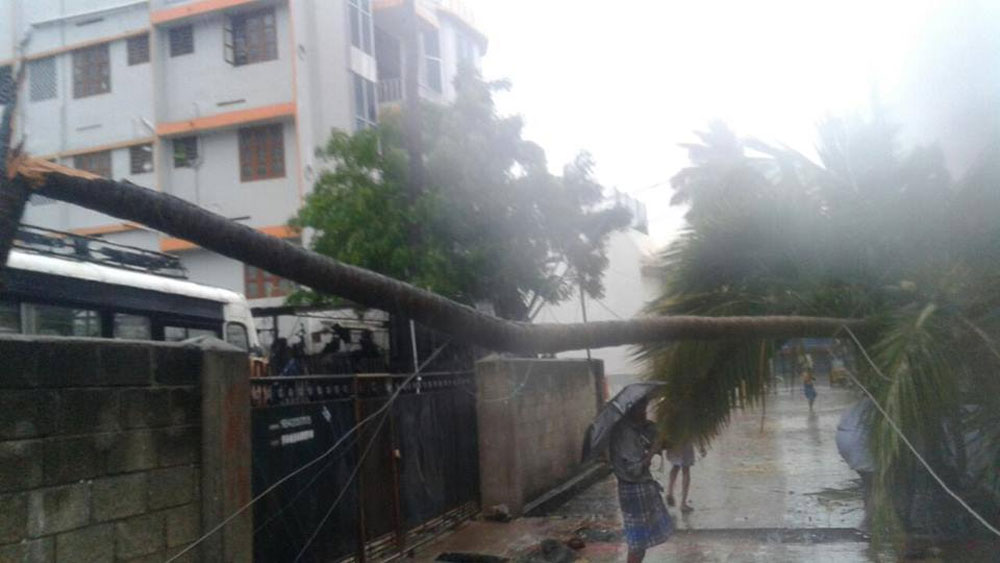 A cyclone alert has been sounded in Kerala and Tamil Nadu on Thursday after strong winds and heavy rain hit southern districts in the states.