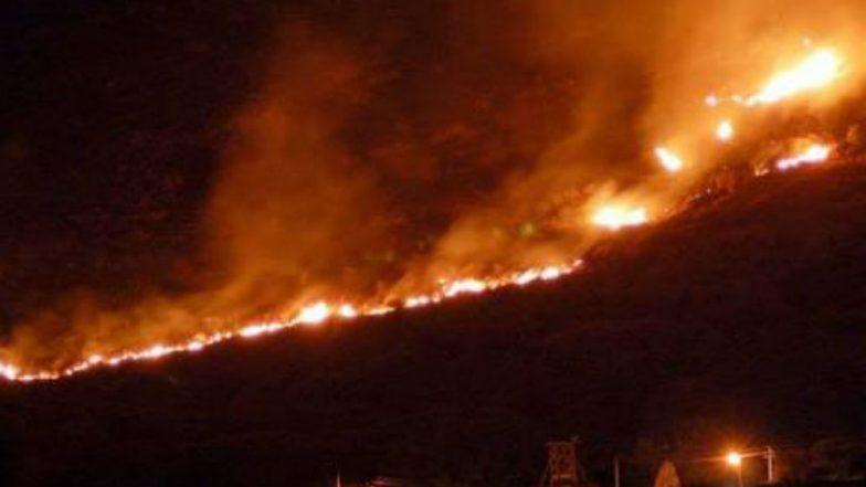 तामिळनाडू : कुरांगनी जंगलाला आग, ११ जणांचा होरपळून मृत्यू