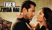 या कारणामुळे पाकिस्तानात रिलीज होणार नाही 'टायगर जिंदा है' सिनेमा
