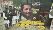 राहुल गांधींकडे अध्यक्षपदाची सूत्रं, कार्यकर्त्यांमध्ये प्रचंड उत्साह