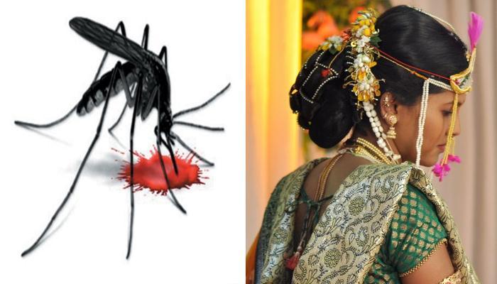 लग्नाआधीच डेंग्यूने तिची केली अखेर...