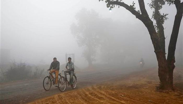 थंडीच्या लाटेनं महाराष्ट्र गारठला, मुंबईलाही हुडहुडी!