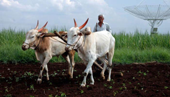 शेती म्हणजे कुबेराचं देणं नव्हे