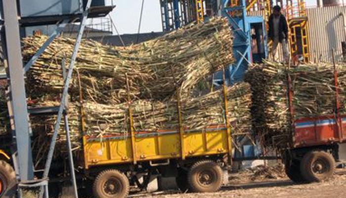 साखर कारखान्यांना ५ हजार कोटींचे अनुदान हवे - साखर संघ