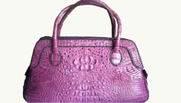 ...ही आहे साडे चौदा करोड रुपयांची पर्स!