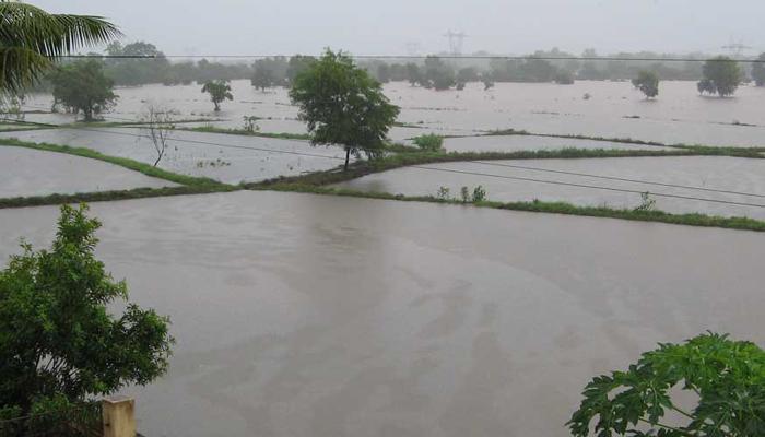 कोकणात जोरदार पाऊस, मुंबई-गोवा महामार्गाची वाहतूक धीमी