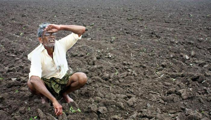 राज्यात पावसाची विश्रांती! शेतकरी चिंतेत