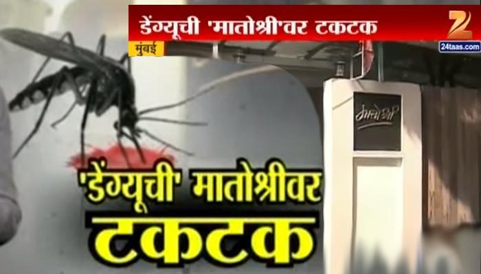 वांद्र्यातील 'मातोश्री'च्या दाराबाहेर डेंग्यूची टकटक