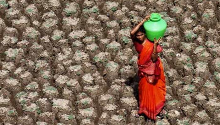 टंचाईग्रस्त भागात पाणी पिण्यासाठीच वापरा, सरकारच्या सूचना