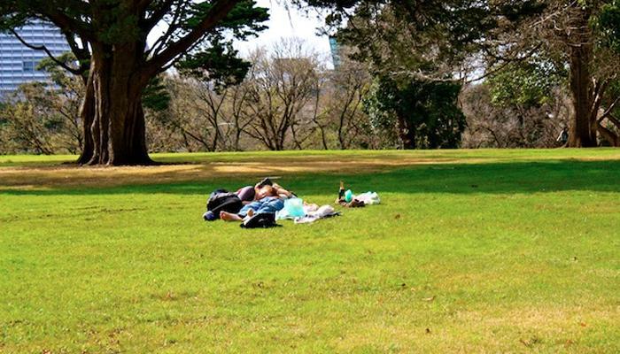नैसर्गिक वातावरण देतं झोपेचा खरा आनंद!