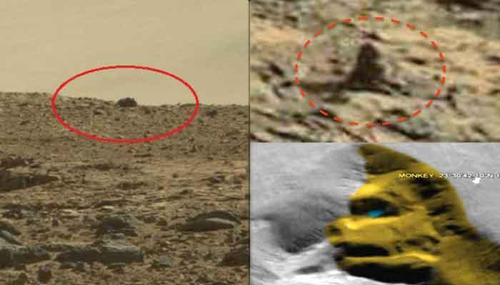 अद्भूत! मंगळ ग्रहावर सापडला उड्या मारणारा उंदीर, शेपटीचं माकड पाहा फोटो