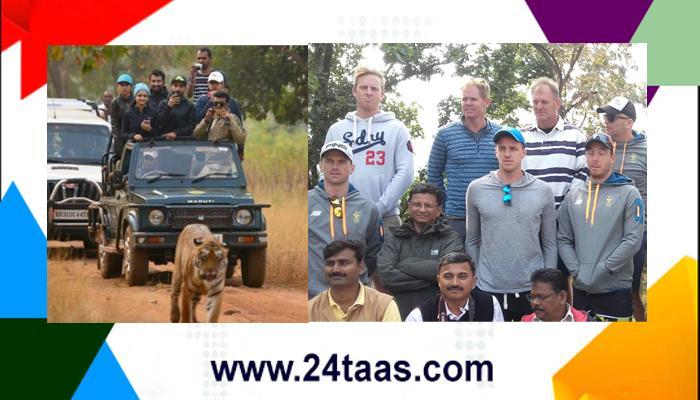 टीम इंडियाची ताडोबात व्याघ्र सफाऱी