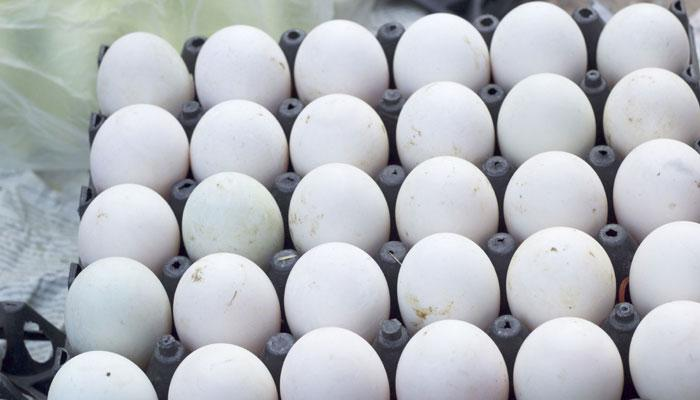 खाऊ नका फ्रिजमध्ये ठेवलेली अंडी