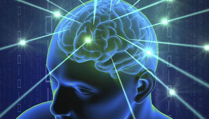 जाणून घ्या तुमचा मेंदू कोणत्या क्षेत्रात तेज आहे