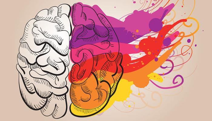 चेक करा... तुमच्या मेंदूचा 'डावा' भाग जास्त कार्यरत आहे की 'उजवा'!