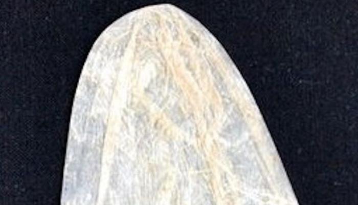 200 वर्ष जुन्या कंडोमचा लिलाव, मिळाली विक्रमी किंमत