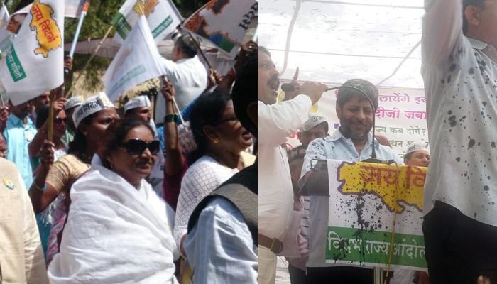 वेगळा विदर्भ आंदोलन : श्रीहरी अणेंवर दिल्लीत शाई फेकली