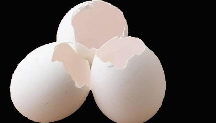 अंड्याच्या टरफलमध्ये लपलेय सुंदर त्वचेचे राज
