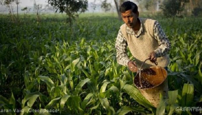 शेतकऱ्यांच्या मुलांना 'रासायनिक शेती नकोशी'