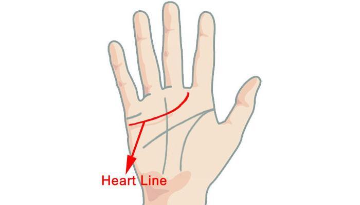 काय सांगते तुमच्या हातावरची हार्ट लाईन ?