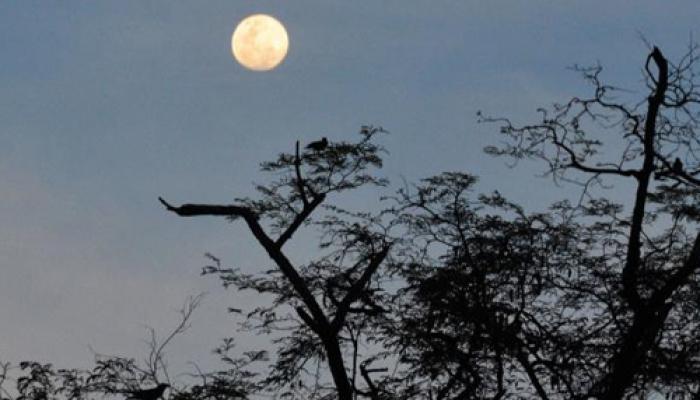 आजचा चंद्र असणार खास