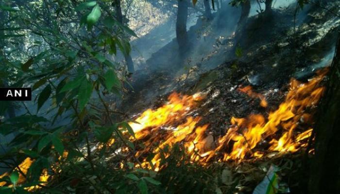 उत्तराखंडच्या जंगलातील आग विझवण्यासाठी हेलिकॉप्टरची मदत
