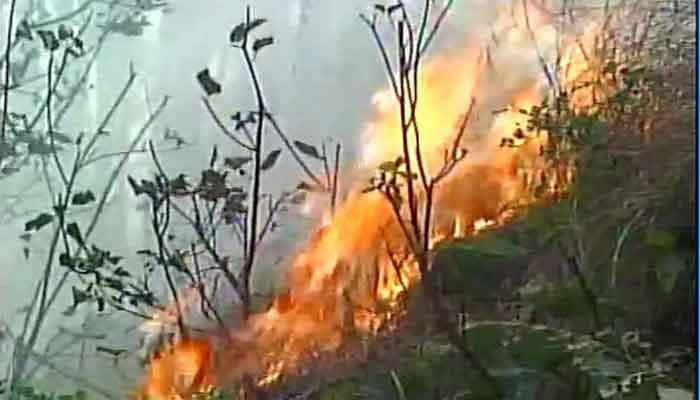 VIDEO : उत्तराखंडनंतर हिमाचल आणि जम्मू-काश्मीरच्या पर्वतरांगांत आगीचा कहर