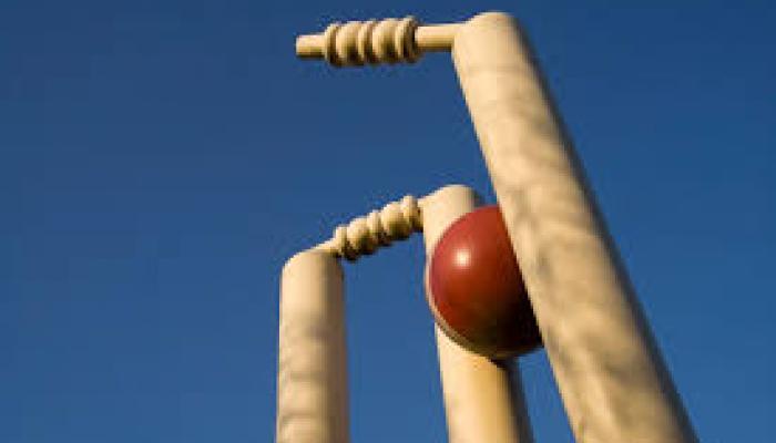 आयपीएलमधील १३ टीमचा रेकॉर्ड, मुंबई होणार नंबर १