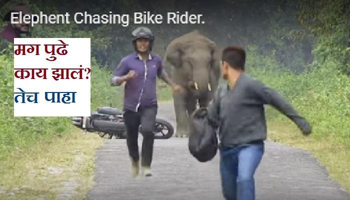 हत्तीने बाईक स्वारांची अशी काही वाट....
