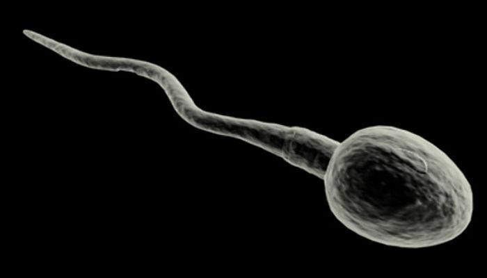 मृत पतीच्या शुक्राणूपासून जन्माला येणार मूल...