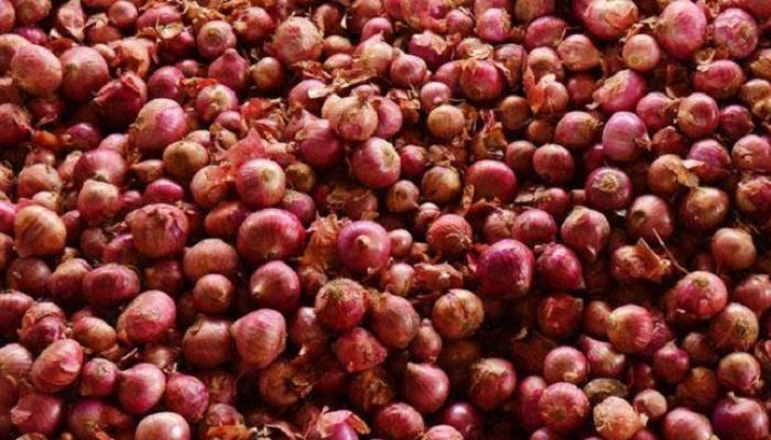 सरकारने कांदा उत्पादक शेतकऱ्याला वाऱ्यावर सोडल्याचे उघड