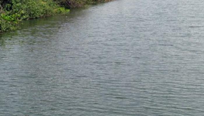 नागपूरमध्ये सहा महिलांचा बुडून मृत्यू