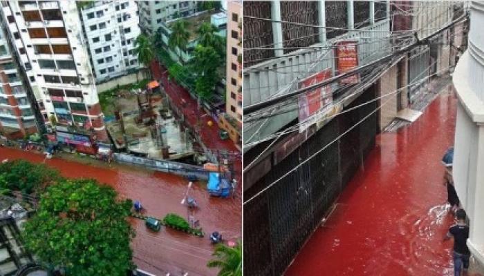 ढाक्यात रक्ताने लाल झालेत रस्ते, व्हायरल होणाऱ्या या फोटो मागील हे आहे सत्य!