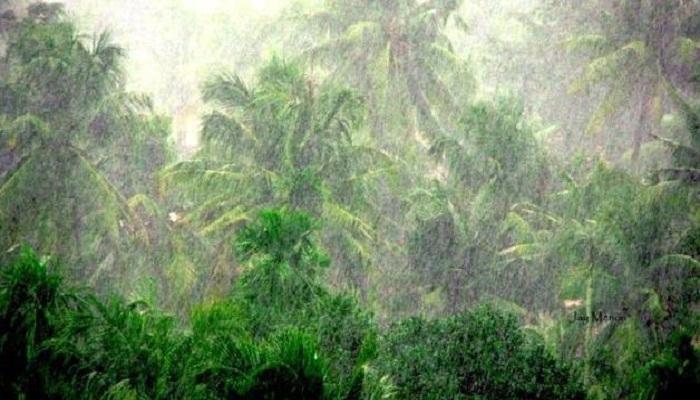 कोकणात पावसाचा धुमाकूळ, नारंगी, चोरद, जगबुडी नद्यांना पूर