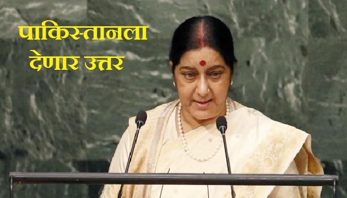 सुषमा स्वराज युएनमध्ये या मुद्यांवर करणार पाकिस्तानला लक्ष्य