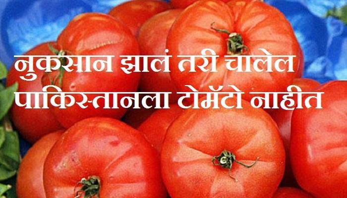 पाकिस्तानला टोमॅटो न देण्याची शेतकऱ्यांची भूमिका