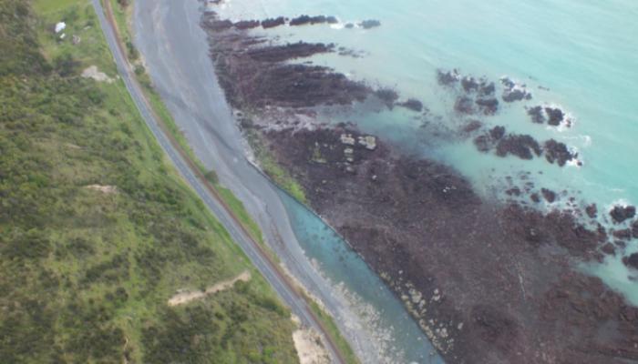 भुकंपाच्या हादऱ्यामुळे न्यूझीलंडमधला समुद्रच गायब