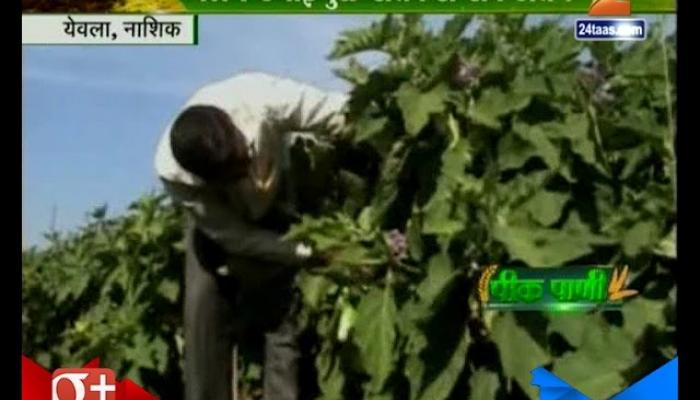 Peekpani | Yeola | Nashik Farmers In Problem