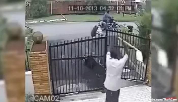 चोरीचा असा व्हिडिओ तुम्ही याआधी कधी पाहिला नसेल