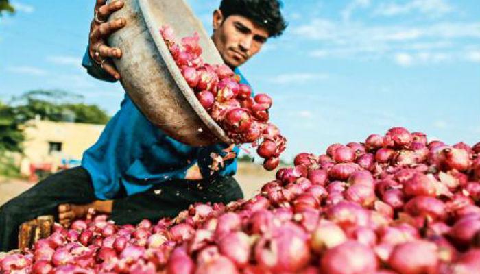 नोटाबंदीचे 50 दिवस... शेतकऱ्यांच्या विवंचना कायम!