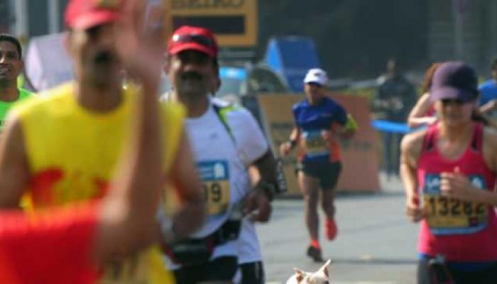 मुंबई मॅरेथॉनमध्ये सहभागी होणार 42 हजार धावपटू
